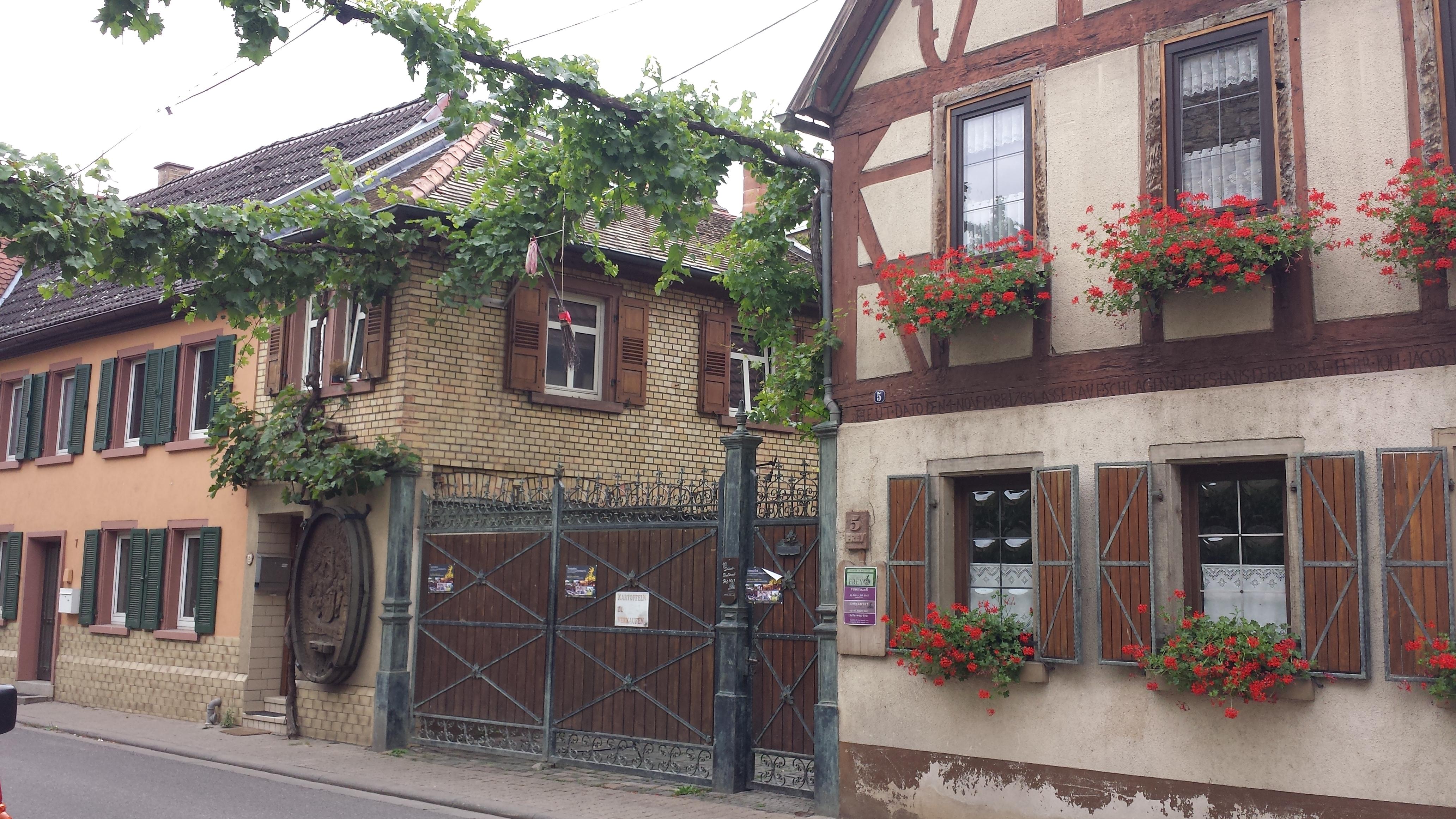 Von Mainz bis in die Pfalz 2017 – Wolkenfolgen